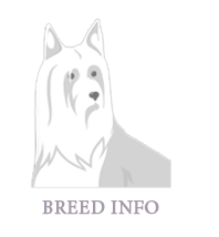 Breed info en active